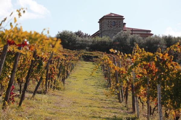 amalfi-coast-wines-day3