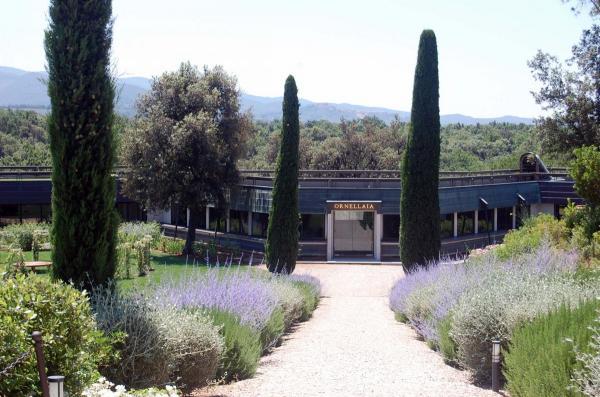 Argiano tour Ornellaia winery